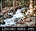 For Padraig: different kinds of gardens & folliage - Flowing Water Over Rocks and Trees.jpg 510195 bytes-flowing-water-over-rocks-trees.jpg