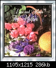 For Padraig: God's Way of Showing the Beauty of Flowers & Gardens - B.B.U.M.C. Mother's Day Sunday Service Bulletin Cover, May 9, 2004 (Framed).jpg 292852 bytes-b.b.u.m.c.-mothers-day-sunday-service-bulletin-cover-may-9-2004-framed-.jpg