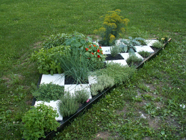 Beds on pinterest for Checkerboard garden designs
