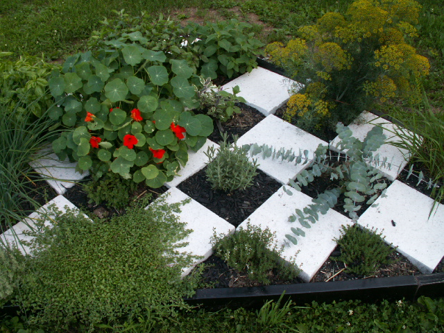 Checkerboard herb garden file 4 of 4 checkerboard for Checkerboard garden designs