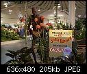 -1sb-orchidshow-07dsc00442.jpg